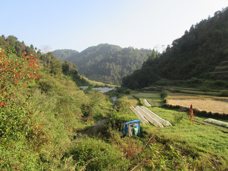 Nepalese valley with polytunnels